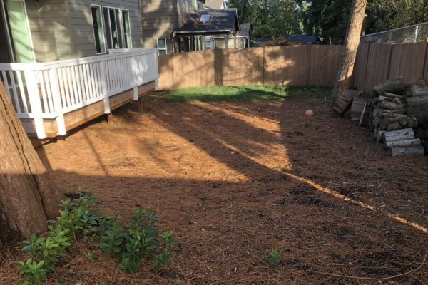 A lawn being prepared for renovation.